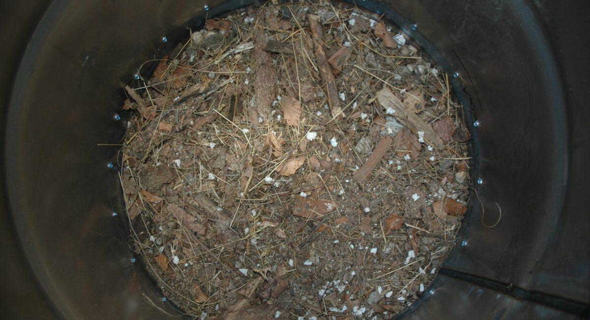 forno a segatura percorso argilla (3)